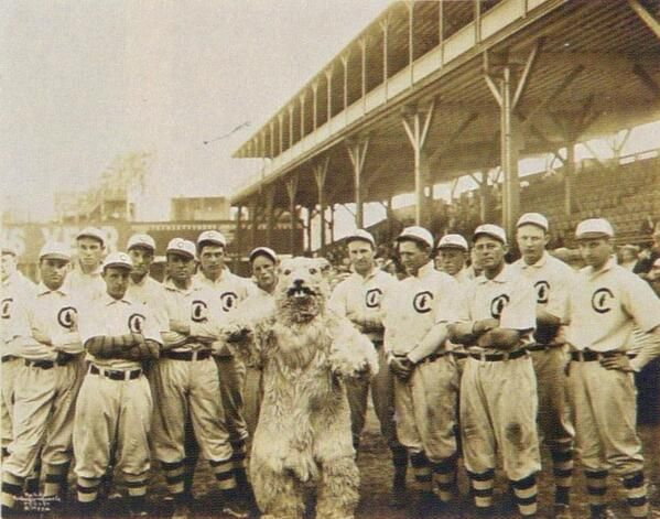 Chicago Cubs' mascot in 1908: A giant squirrel.