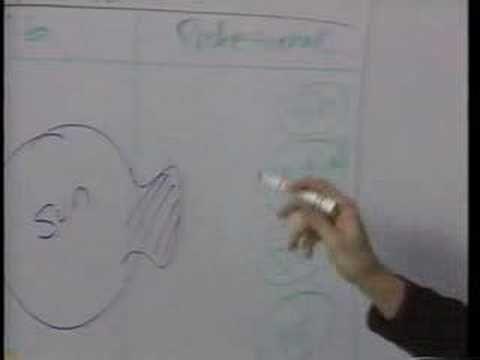 Steve Jobs brainstorm with the NeXT team #stevejobs