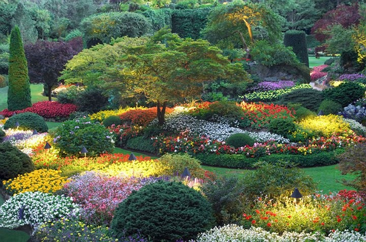 Garden of splendor wow secret gardens pinterest for Most beautiful garden flowers