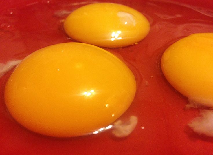 The only thing worse than a rotten egg, is a freshly laid rotten egg from a sick hen you can't identify.
