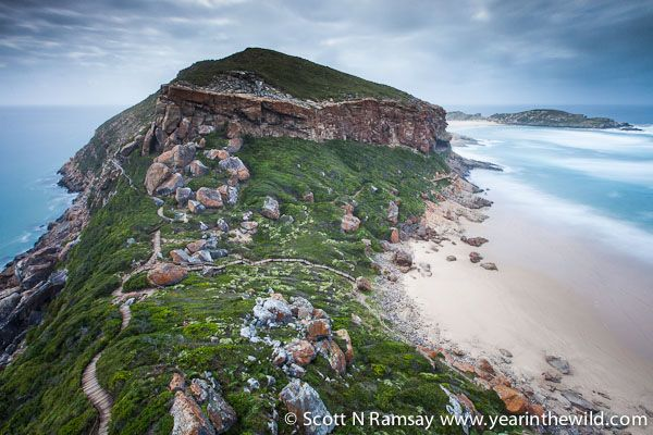 """This is the view of the so-called """"gap"""" of Robberg, where the peninsula narrows somewhat."""