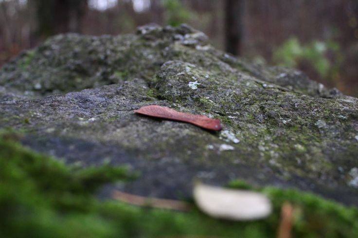 German leaf.