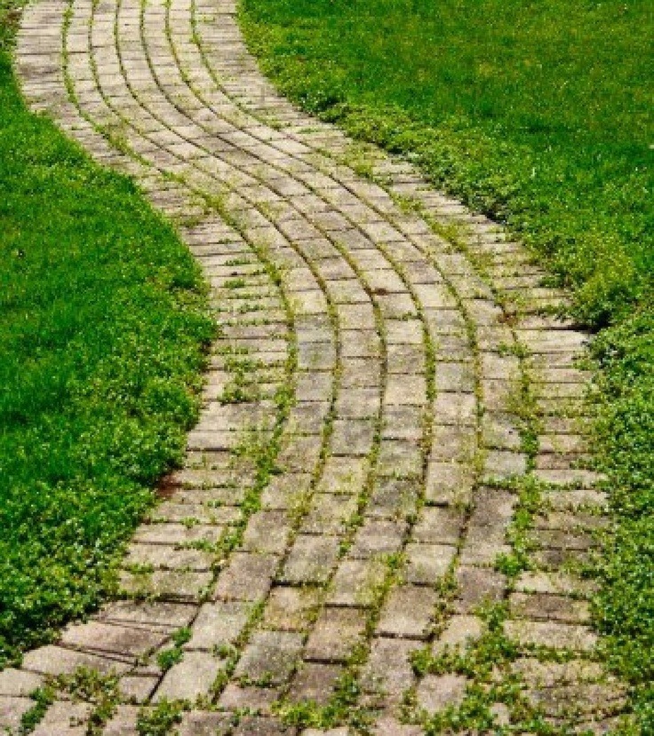 A Brick Walking Path That Curves With Grass. Stock Photo