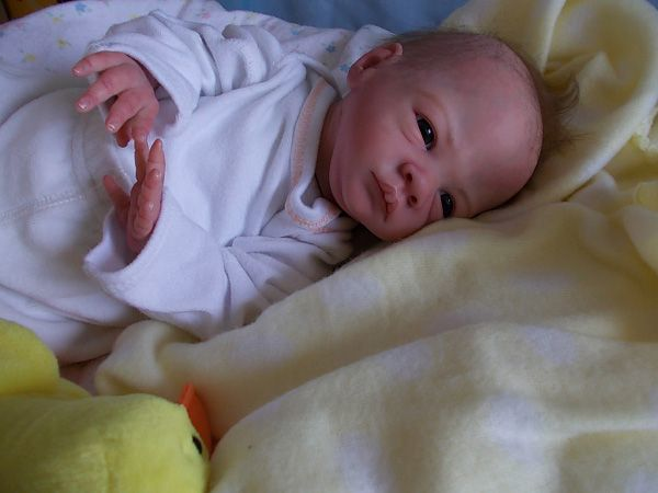 entries in the February 2013 most realistic reborn baby doll competition