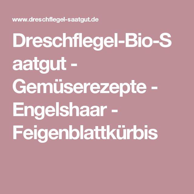 Dreschflegel-Bio-Saatgut - Gemüserezepte - Engelshaar - Feigenblattkürbis