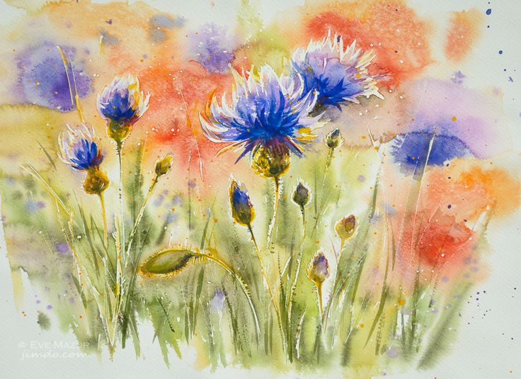 Cornflowers and poppies 34x46 eve-mazur.jimdo.com
