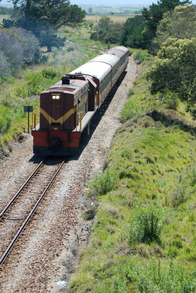 The Outeniqua Tjoe Choo Trains that runs between George & Hartenbos, South Africa.