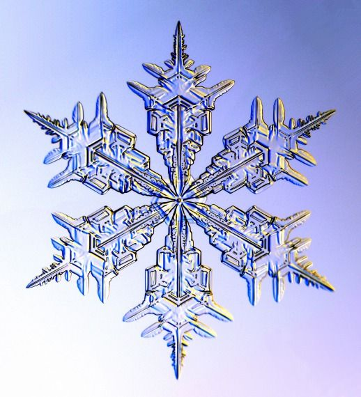 Gorgeous snowflakes. Did you know snowflakes can only have 6 points (doubles have 12, obviously).