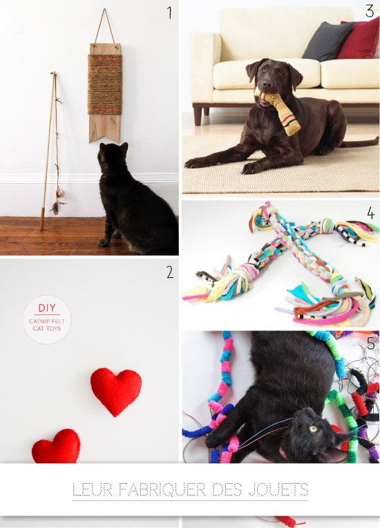 0 DIY pour les chats et les chiens