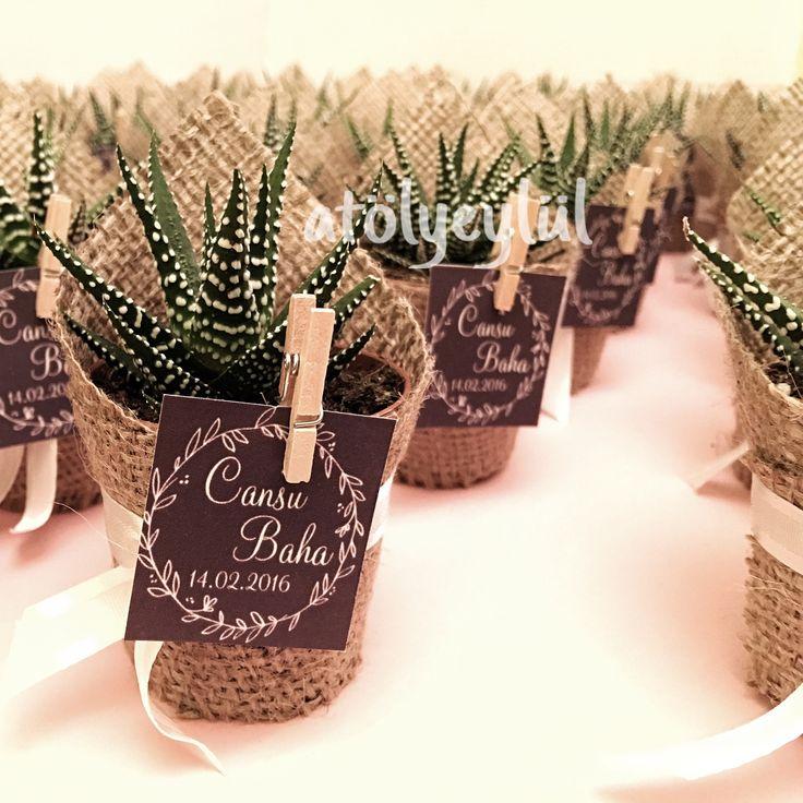 Mini sukulent, mini succulent, kaktüs, cactus, wedding favors, nikah şekeri, nikah hediyesi, babyshower gifts, christmas, valentines day, sevgililer günü, custom made, Handmade gifts ~ by Atolyeylul