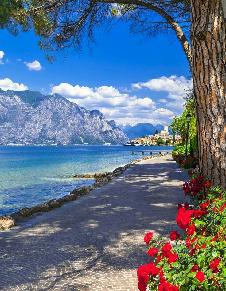 Malcesine, Lake Garda Italy                                                                                                                                                     More  ✈✈✈ Don't miss your chance to win a Free International Roundtrip Ticket to Verona, Italy from anywhere in the world **GIVEAWAY** ✈✈✈ https://thedecisionmoment.com/free-roundtrip-tickets-to-europe-italy-verona/
