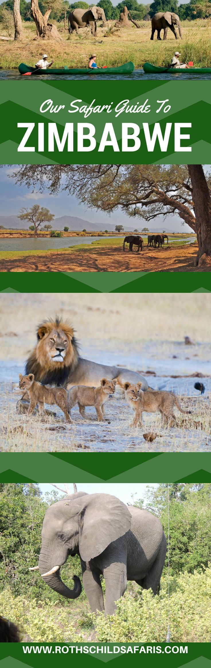 Here are few good reason why you need to consider #Zimbabwe for for you next (truly wild!) African safari.