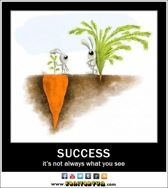 Success - Not Always What You See - Sanitaryum | CLEAN HUMOR | Clean ...
