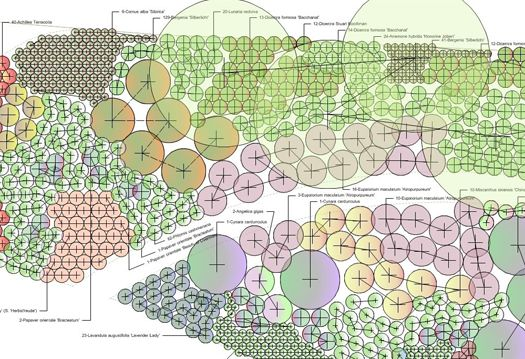 detailed planting plan - species and quantities | Ландшафт ...