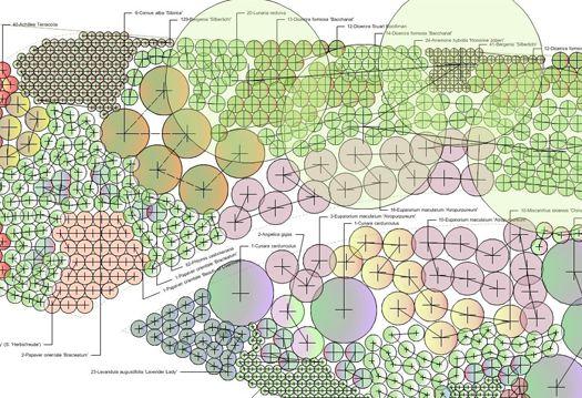 Detailed Planting Plan Species And Quantities Landscape Documentation Pinterest Planting