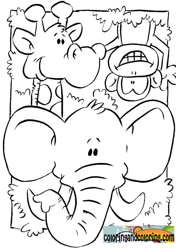 jungle animals coloring pages for kids coloring and coloring - Animal Coloring Pages Children