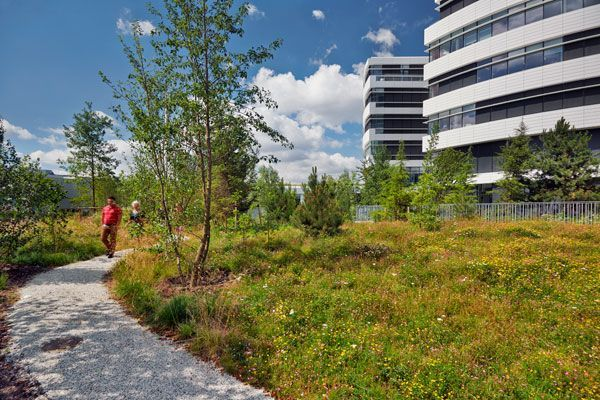 Mother Nature Takes Centre Stage at the Novo Nordisk Nature Park