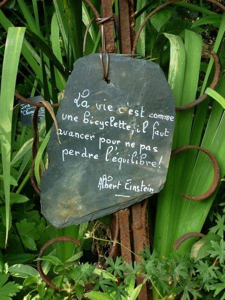 Un joli mot au jardin