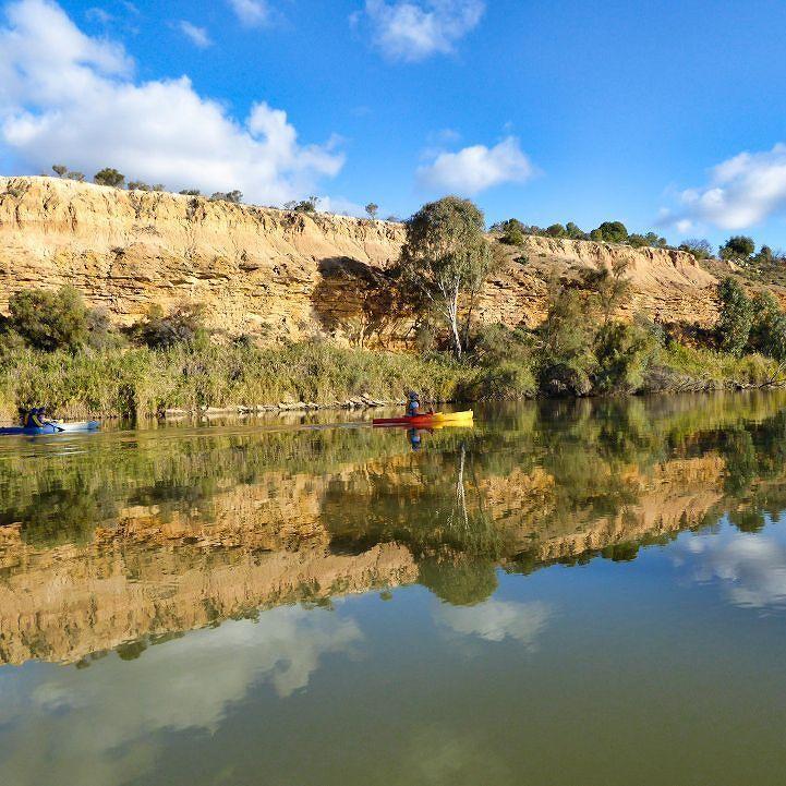 Enjoying a perfect Winter Day at Rili Reserve in the Murray River between Berri and Loxton with hired kayaks delivered from Berri.  #australianLife  #ig_australia #myviewsamdb  #visitthemurray #nationalparksSA  #kayaking #canoe  #myriverland  #south_oz #sagreat #insidesouthaustralia #australianLife  #ig_australia #myviewsamdb  #visitthemurray #nationalparksSA