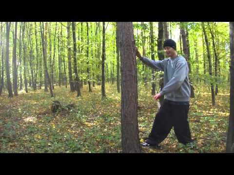 Zhen Wu - Training to use your hips