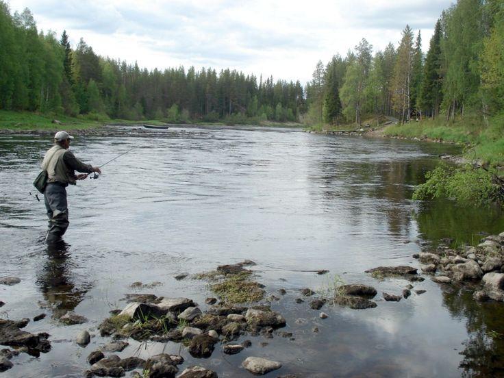 hirivpirtit lapland Finland Taivalkoski fishing in Iijoki 2