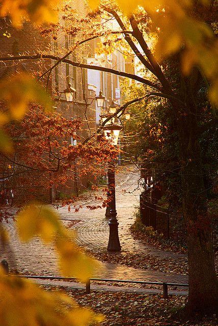 Lantaarn/Lantern, Singel, Utrecht by lambertwm, via Flickr #Autumn #fall #orange