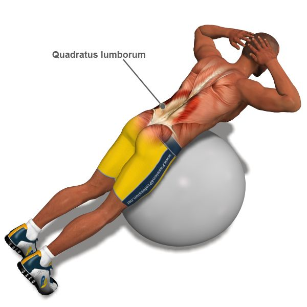 24 best images about exercise for back muscles on for Housse ballon yoga