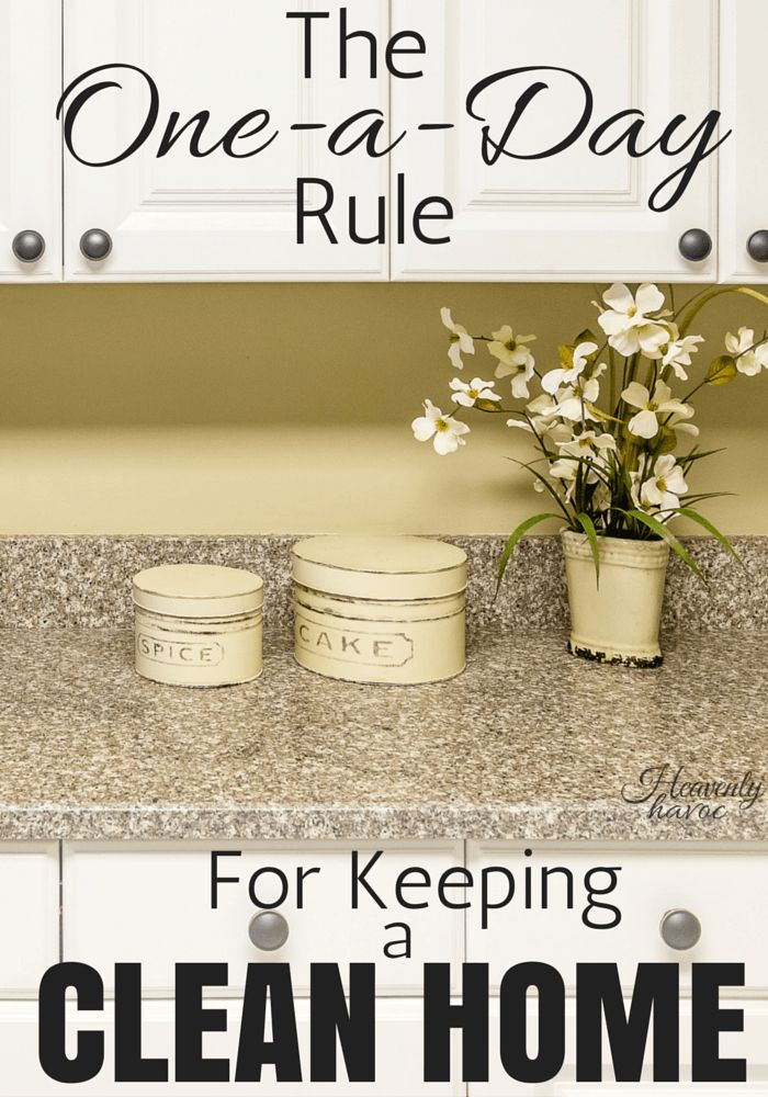 The One-a-Day Rule is about as easy as it gets for keeping a clean home! Your life and your house will thank you!