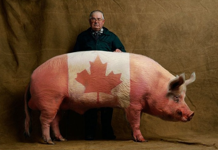 mmmm Canadian Bacon