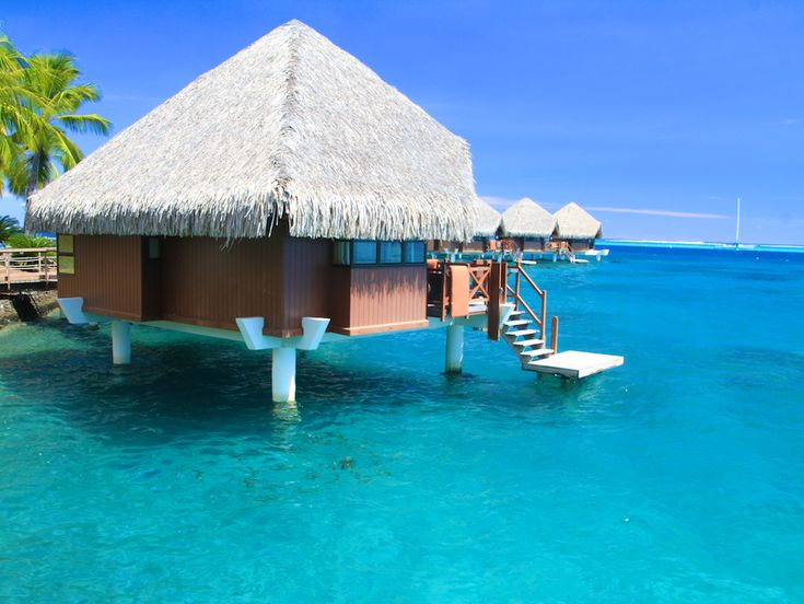 A Polinésia Francesa é o destino dos sonhos de muita gente. Neste post compartilho com vocês algumas dicas práticas para visitar o Tahiti e Moorea