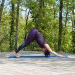 De zonnegroet is serie houdingen die yogi's vaak doen aan het begin van de les. Dit om je lichaam op te warmen en klaar te maken voor de houdingen die zullen volgen.  Op mijn website vind je uitleg over de zonnegroet en foto's van de verschillende houdingen.   Laat je inspireren en voeg de zonnegroet toe aan je dagelijkse yoga-beoefening.