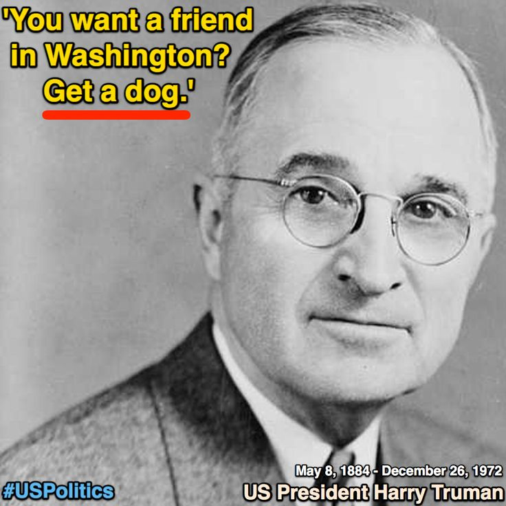 US President Harry Truman: 'You want a friend in Washington? Get a dog.' [The Spectator Index] https://twitter.com/spectatorindex/status/944651334250360832 ②⓪①⑦ ①② ②④ #USPolitics