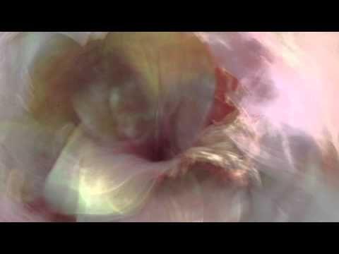 Flute & Harp music by samjjana - 'Sanctuary'
