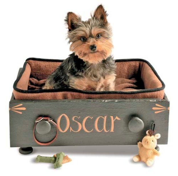 DIY Dog Beds - Customized Drawer Pet Bed - Projects and Ideas for Large, Medium and Small Dogs. Cute and Easy No Sew Crafts for Your Pets. Pallet, Crate, PVC and End Table Dog Bed Tutorials http://diyjoy.com/diy-dog-beds
