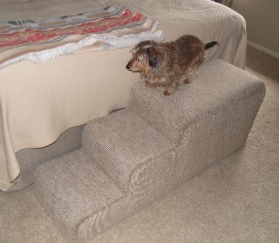 Pet Bench: Upholstered Pet, Pet Benches