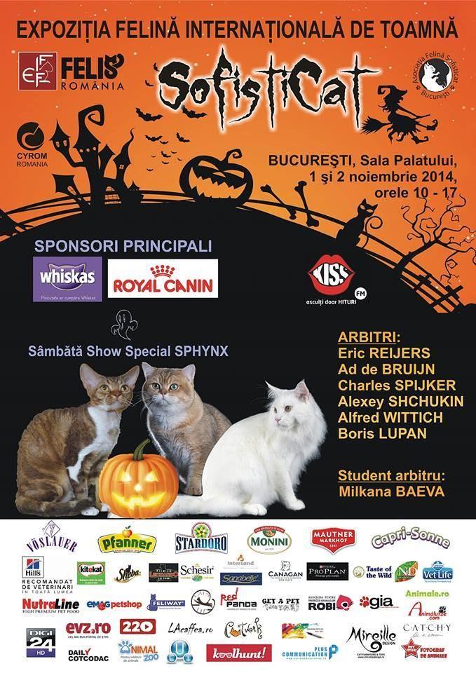 In preajma noptii de Halloween clubul SofistiCAT  organizeaza  in zilele de 1 si 2 noiembrie un  atractiv concurs de pisici venite de peste mari si tari.