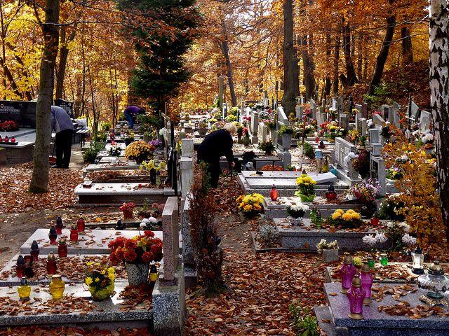 La Toussaint est la fête de tous les saints et se célèbre le 1er novembre. C'est une fête d'origine catholique et un jour férié en France.