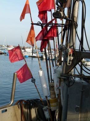 Fischerboote im Kühlungsborner Bootshafen (c) FRank Koebsch