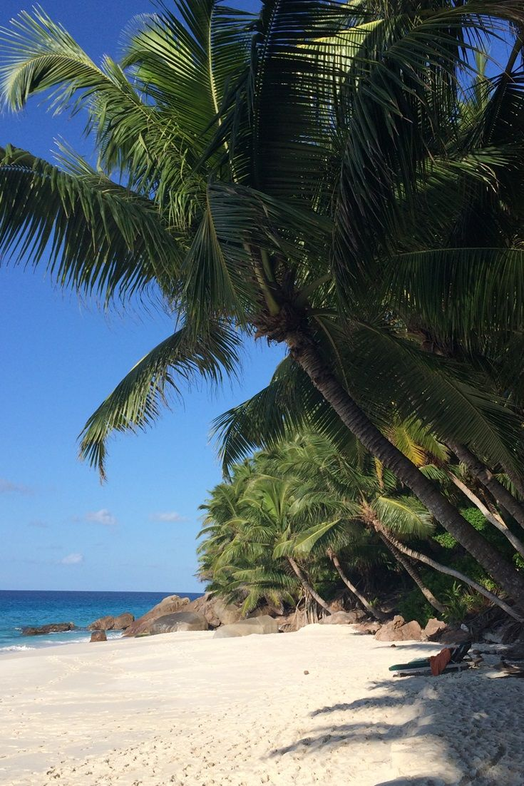 Secluded powdery white beaches on Fregate Island Private, a perfect location for a dream #honeymoon! #Seychelles #travel #luxury #adventure #beach