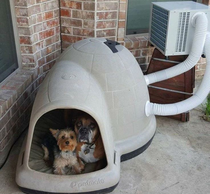 Even your dogs can get air conditioning in their home! | Pass One Hour Heating & Air Conditioning | (618) 997-6471 | www.passonehour.com