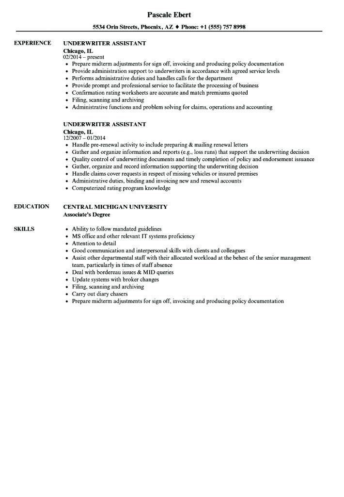 Underwriting Assistant Resume Gallery Underwriting Assistant