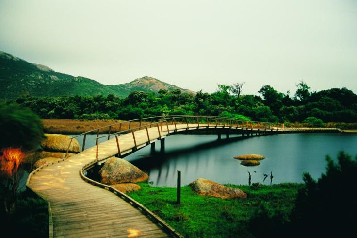 Wilsons Promontory, Australia.  Beautiful park with lots of very cool wildlife!  I stood on this bridge :)