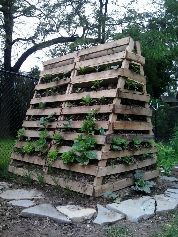 Using Logs For Raised Beds And Termites