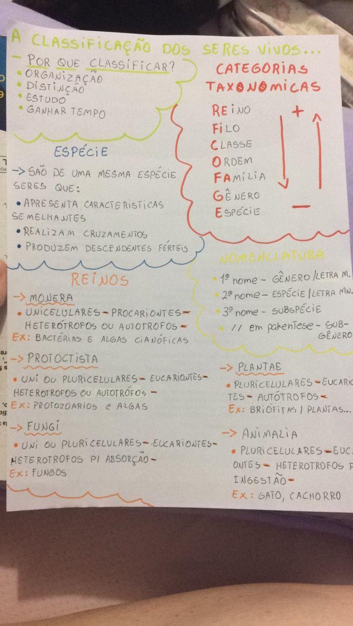 A classificação dos seres vivos - Biologia