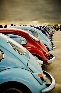 Volkswagen Beatles - Slug Bugs!! Oh how fun this would be!