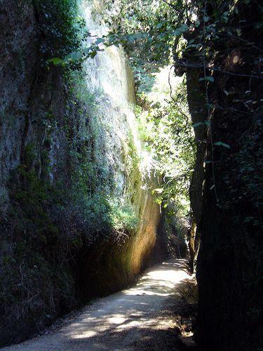 The Vie Cave. or cavoni, linking Rome to Manciano.  Sorano, Sovana, and Pitigliano.  ITALY.