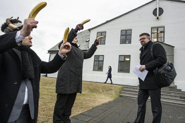"""Elvira Méndez sobre Islandia: """"Se depositan plátanos a las puertas del Parlamento como símbolo de una república bananera y autoritaria que priva a los ciudadanos de sus derechos políticos y civiles. También se ha recibido con plátanos a los Ministros del Gobierno a su llegada al Consejo de Ministros."""""""