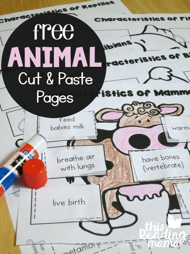 FREE Animal Classification Cut and Paste Pages for Vertebrates - This Reading Mama