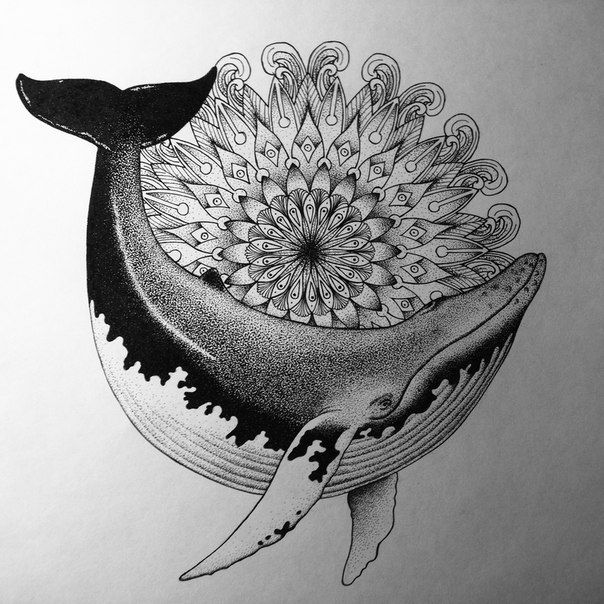 киты рисунки - Пошук Google