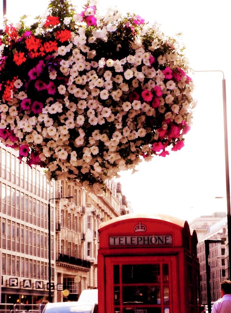 Telephone Box near Piccadilly Circus